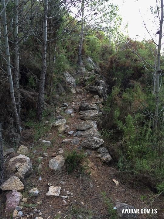 Antiguo camino ruta de la solana